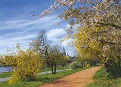 Dresden_spring
