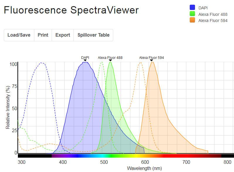 Fluorescent spectraviewer